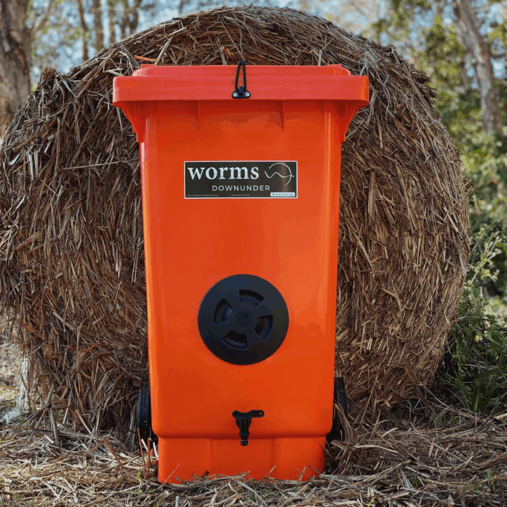 Orange Worm Bin