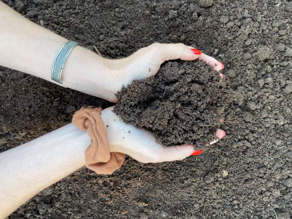 Vermicomposting Vs Composting Cast Hands