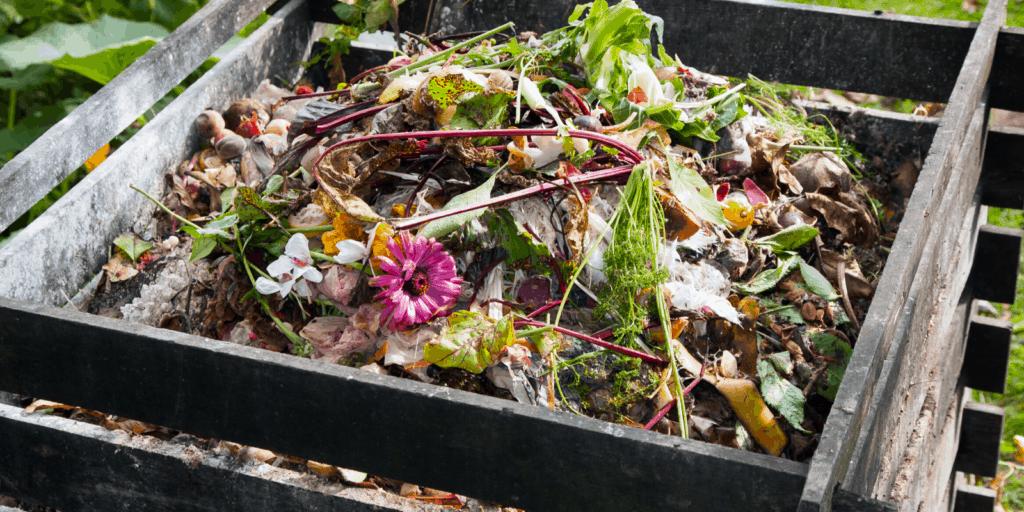 Vermicomposting Vs Composting Compost Heap