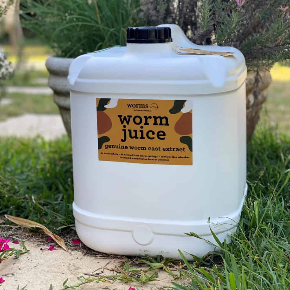 Worm Cast Extract 20L Worm Juice