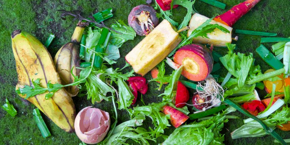 Brisbane Compost Worm Farm Rebate Incentive Council